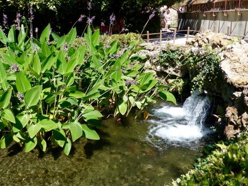 Bambouseraie, Anduze, Cévennes,bassins,Eugène
