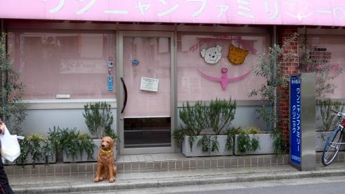 Tokyo,Otsuka,rues, marché, métro, Akihabara, Shibuya