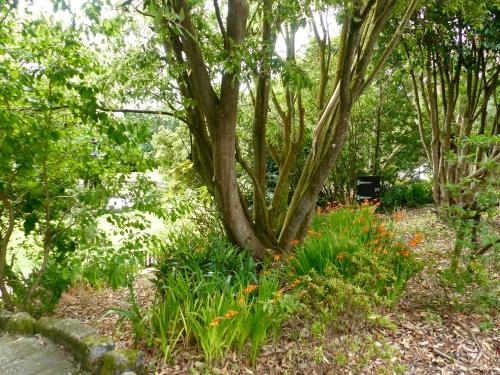 Cornouaille, Penzance, Newlyn