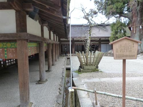 Japon, Uji, Kasuga,taïsha,sanctuaire