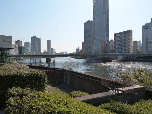 Japon, Tokyo,safari,photos