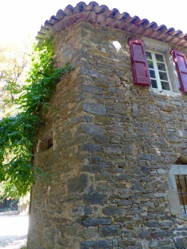 Bambouseraie, Anduze, Cévennes