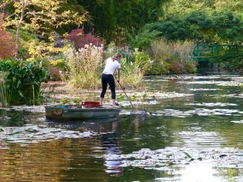 Giverny,Monet,étang